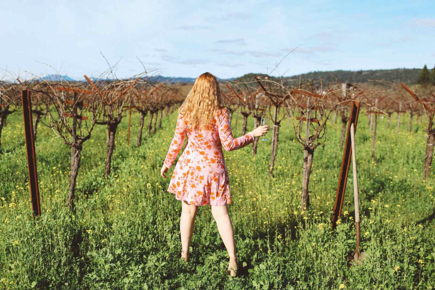 Napa Valley For Valentine's Day Travel Guide