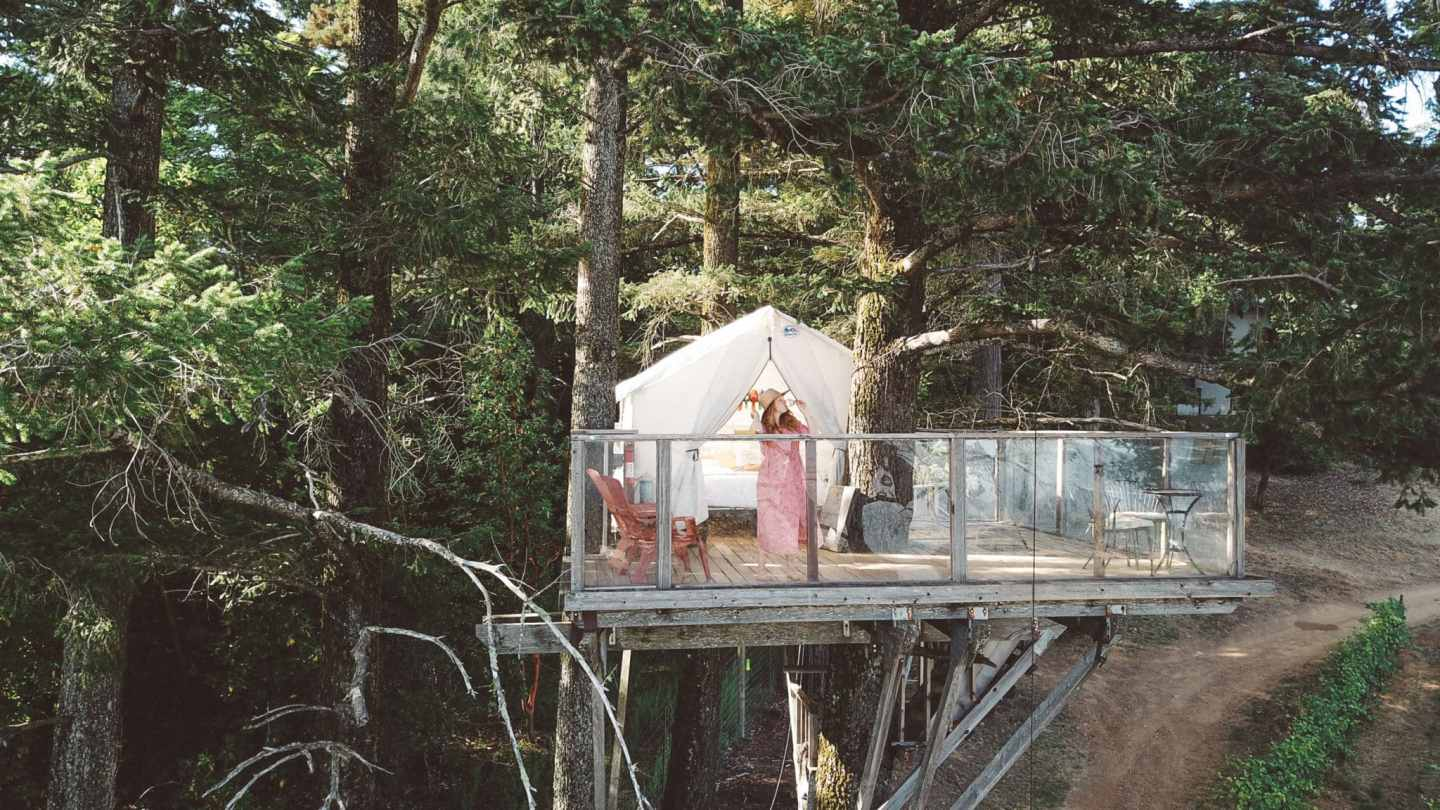 10 Cool Treehouse Airbnb's You'll Want To Sleep In