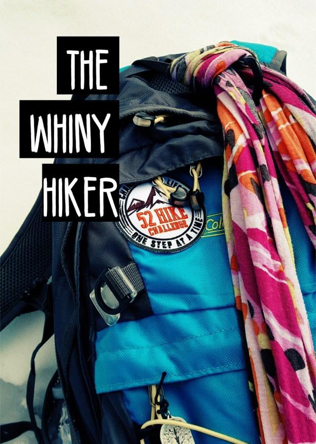 Blue daypack