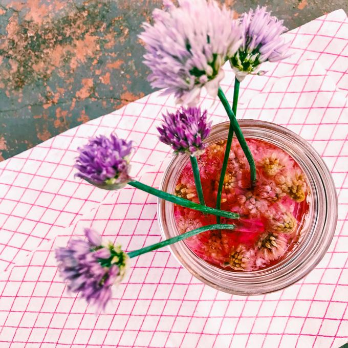 Chive Blossom Vinegar from Garden Spells