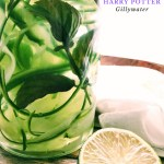 gillywater in a glass container with a lime