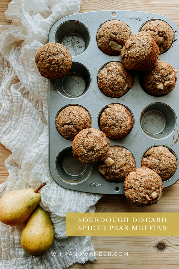 a tin full of Sourdough Discard Spiced Pear Muffins resting on a light colored cloth next to pears on a wooden surface