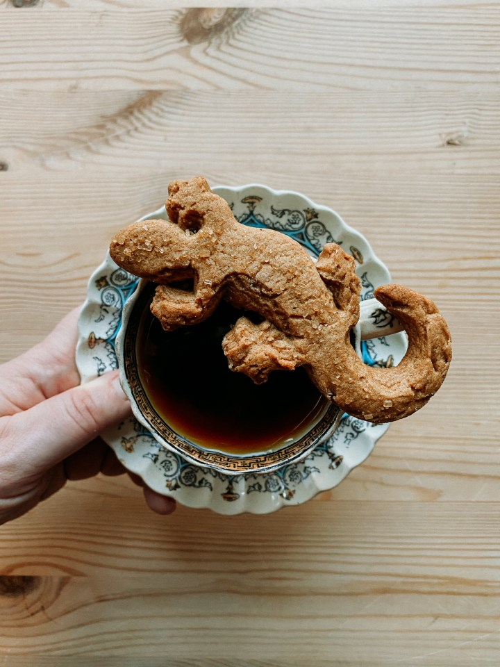 a hand holding a saucer with a cup of tea and a newt shaped ginger nut biscuit resting on top of the cup