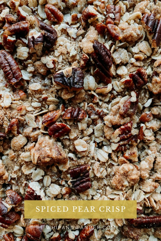 closeup of pecans and old fashioned oats, spices, and brown sugar that comprise a crisp topping
