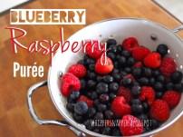 Blueberry-Raspberry Baby Food