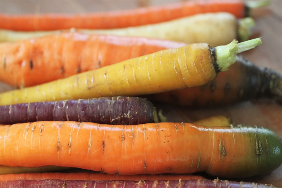 Several rainbow carrots, washed but not yet peeled, rest on a wooden surface - ready to be baked into a this savory tart recipe.