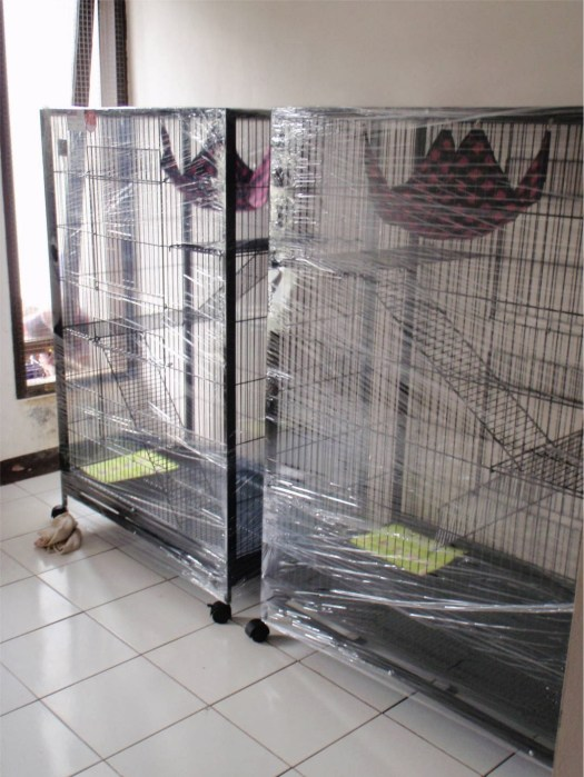 new cages