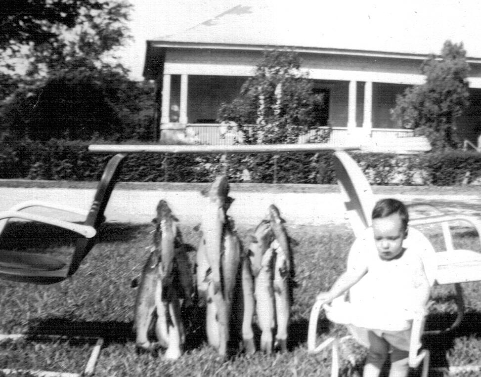 San Marcos River Catfish