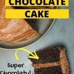 Classic moist chocolate cake
