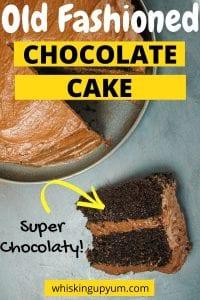 Classic moist chocolate cake