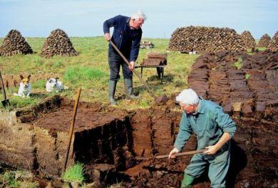 Cortadores de turba en Islay