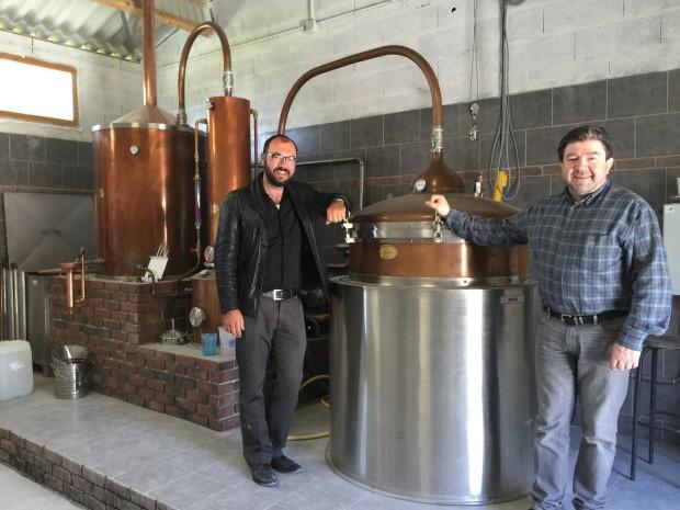 Ein Blick in die Golan Heights Distillery