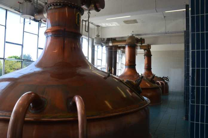 Great Northern Distillery. Der Stillroom.