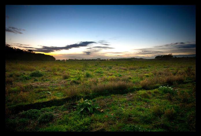 Der geplante Standort der Fergus&Kyndal Destillerie bei Glenrothes - Foto von Euan Morrison