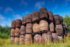 Stack of discarded Sherry butts, Convalmore Distillery