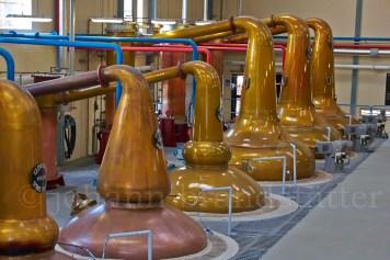 Stillhouse, Glenfiddich Distillery still house