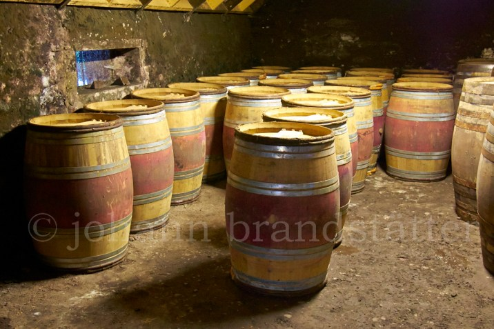 Empty Bordeaux wine casks