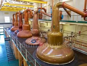 Still house, Glen Grant Distillery