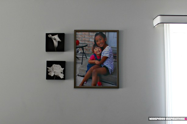 Elephoto Canvas Print