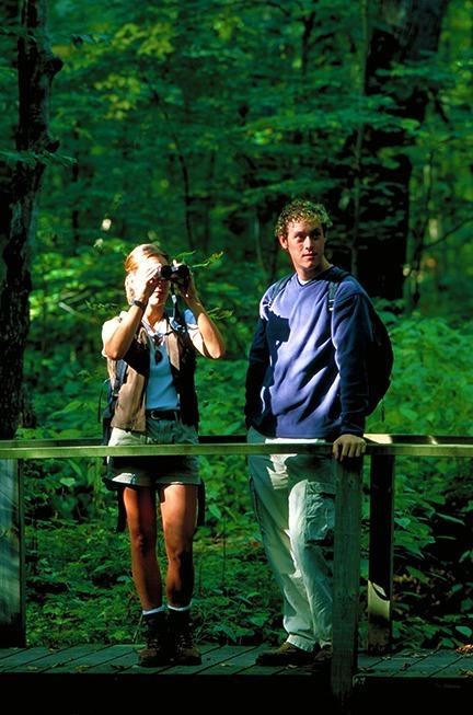 Hiking in Peters Wood