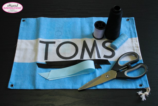 TOMS-01
