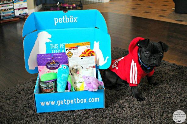 PetBox-February-01