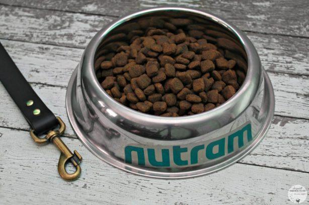 We Rocked the Nutram Optimum Transition Challenge! #NutramOTC