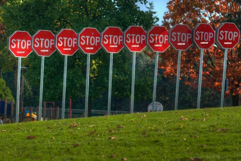 Stop Signs--Photo by Eyesplash, Flickr Creative Commons