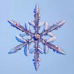 Whistler Snowfall Update