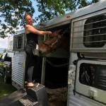 Braiding at a horse show