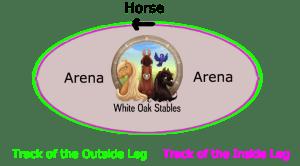 horse-leg-track