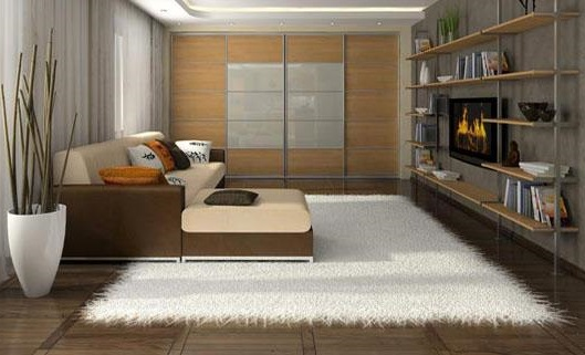 White Area Rug To Beautify Your Room