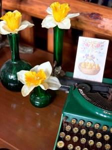Daffodils in green vases