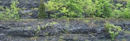 PA shale thin