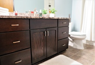 Jaguar Ave, Lakeville Bathroom Remodel (1)