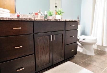 Jaguar Ave, Lakeville Bathroom Remodel (1)