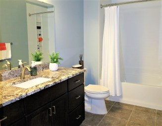 Jaguar Ave, Lakeville Bathroom Remodel (8)