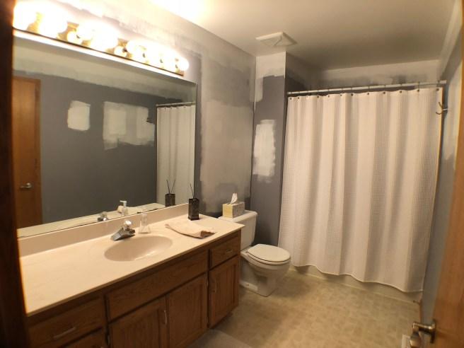 Lakeville Bathroom Remodel