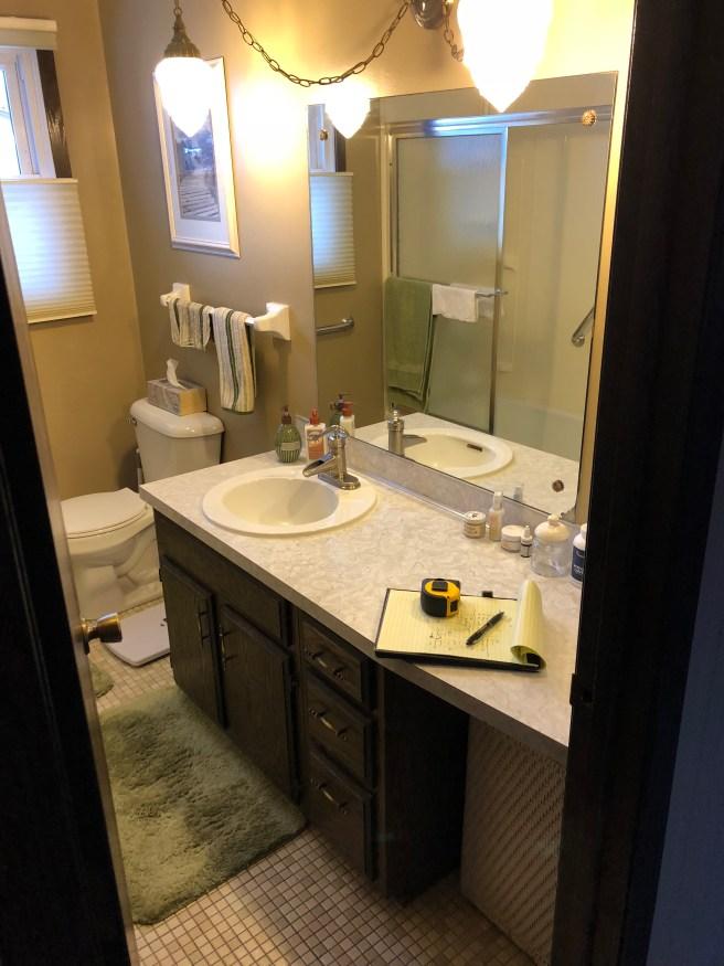 Lakeville, MN Bathroom Design Refresh - Before
