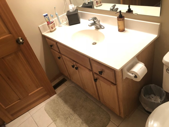 Lakeville Bathroom Remodel - Before Photo