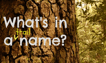 appalachian trail name generator