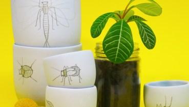 Insect Elke vd Berg