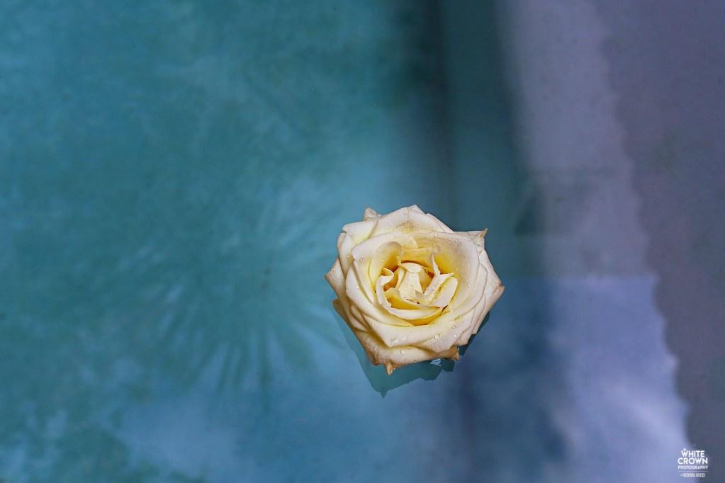 Sophie Palmer, Ricky Bolton, Debora Ducci, White Crown Photography, Playa del Carmen, Destination Wedding, Hotel Esencia, Riviera Maya, Trash the Dress, Xpu-Ha