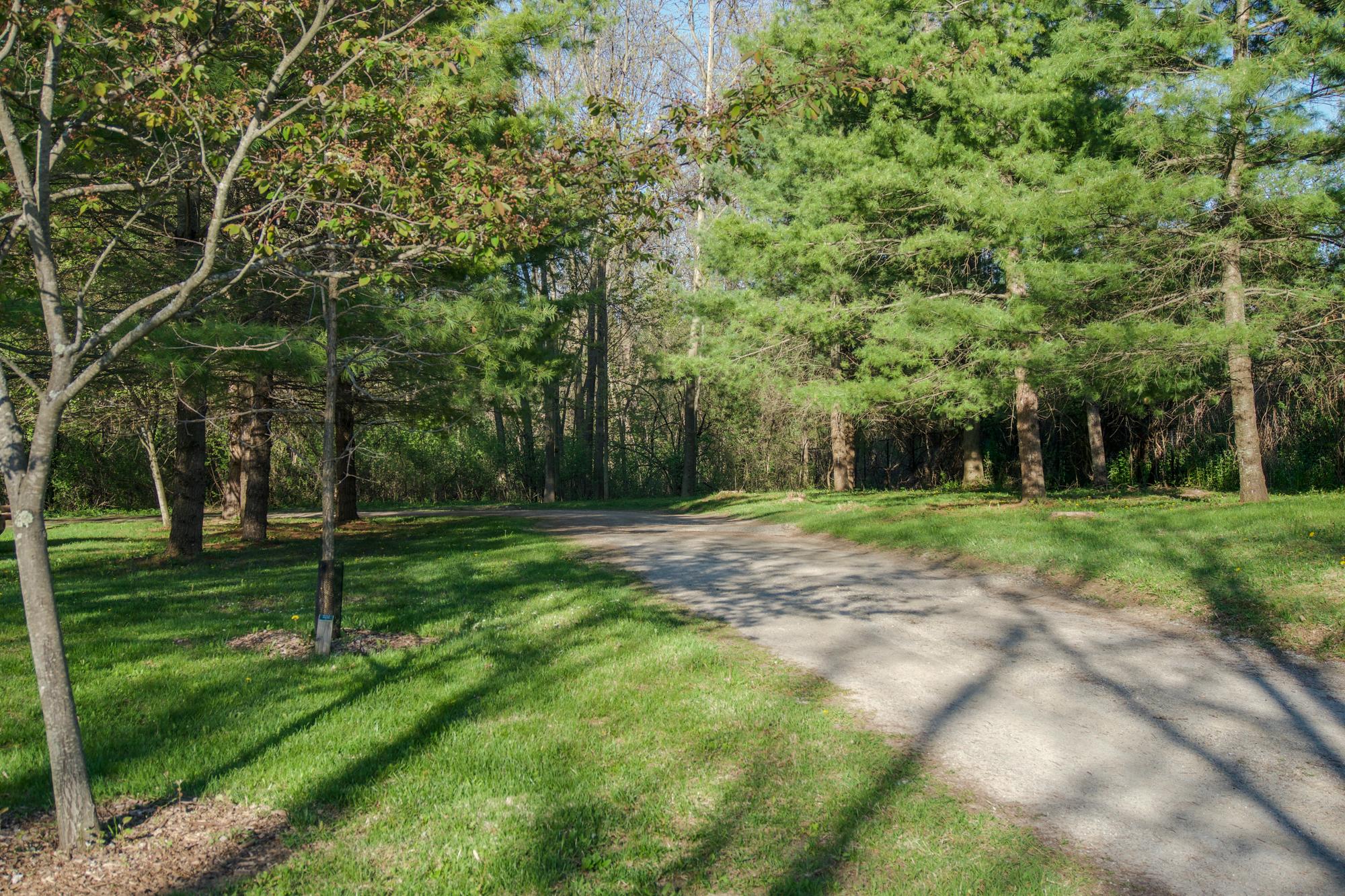 White Falcon Solutions Charlotte Park Site