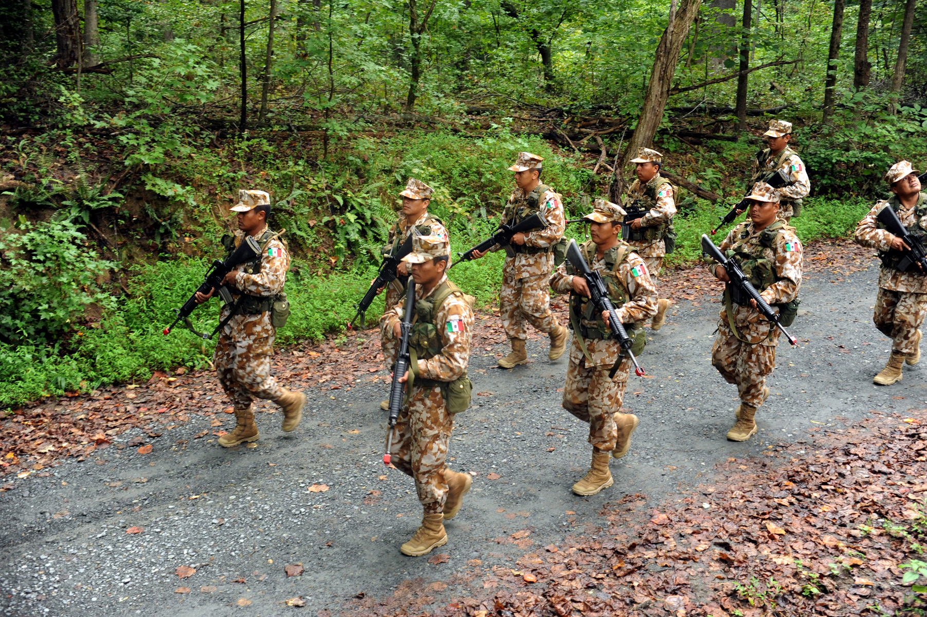 Mexican Naval Infantry soldiers on patrol during an exercise at OCS in Quantico, Virginia. The orange tips at the end of each rifle barrel are blank-firing adaptors.