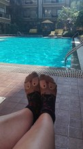 Rudolph by the pool