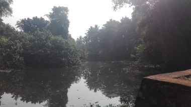 the river outside our homestay