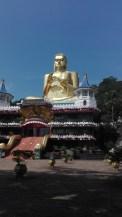 Bling Buddha