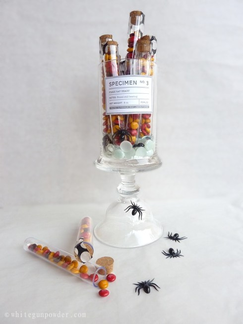Packaging Halloween Treats, Test Tubes