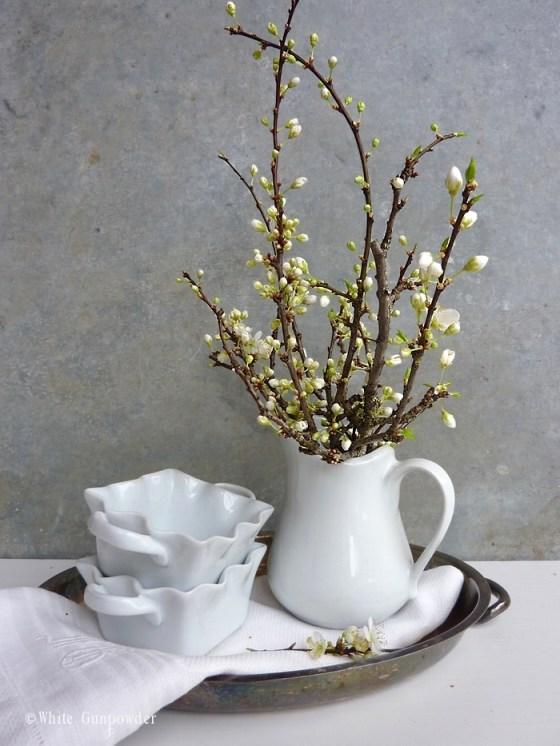 Spring flowering trees & shrubs